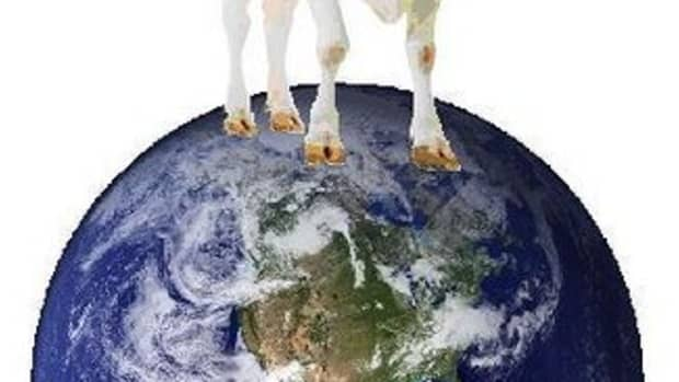 meat-methane-and-global-warming