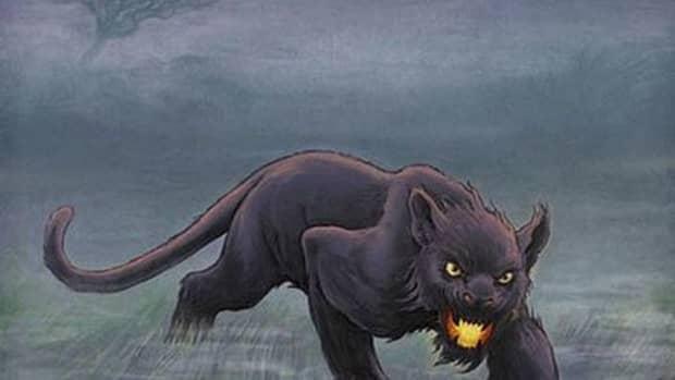 alien-big-cats-the-beast-of-bodmin-moor-and-the-beast-of-buchan