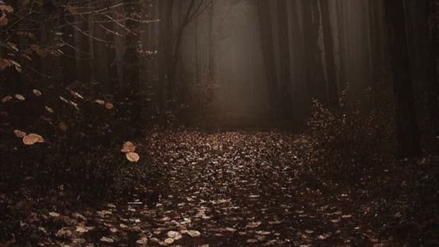 angels-of-haunted-soul-chapter-8