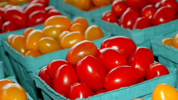 7-health-reasons-to-include-more-tomatoes-in-your-diet