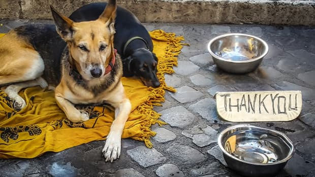 alternative-ways-to-say-thank-you