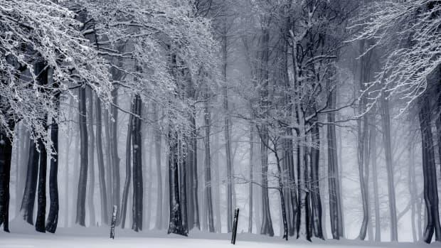 beautiful-winter-in-utah