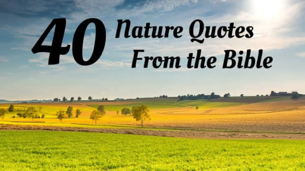 30-nature-quotes-for-the-christian-classroom