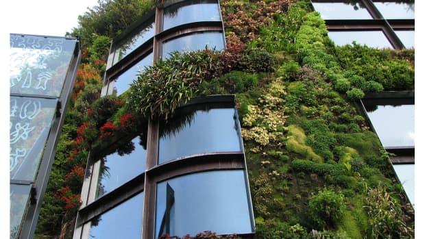 10-brilliant-green-business-ideas