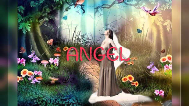 angelsonarole