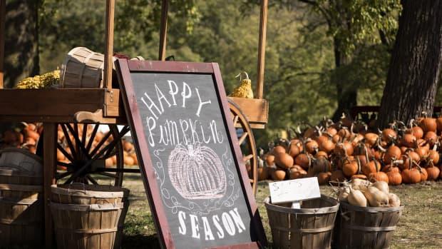 the-most-creative-pumpkin-decorating-ideas-ever