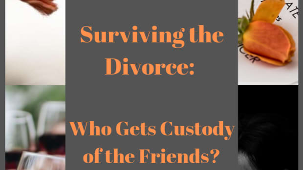 divorce-who-gets-custody-of-the-friends