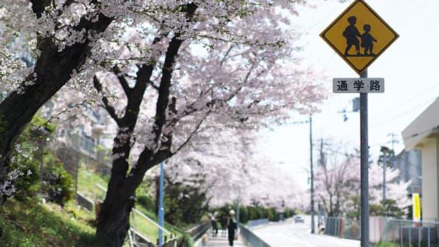 你想在日本教英语