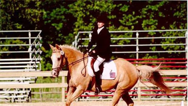 advice-for-your-first-horse-show