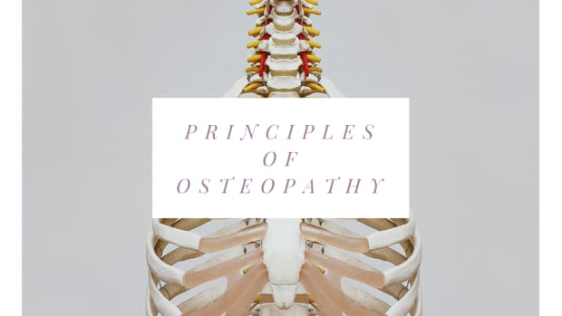 the-principles-of-osteopathy