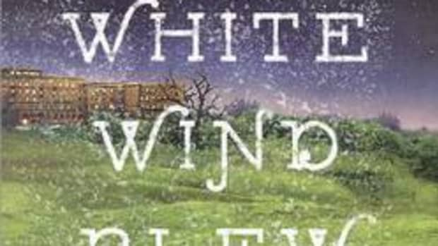 a-white-wind-blew-by-james-markert-book-summary