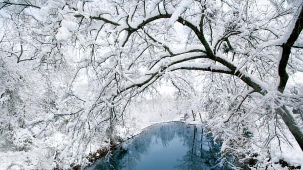 ice-did-fall