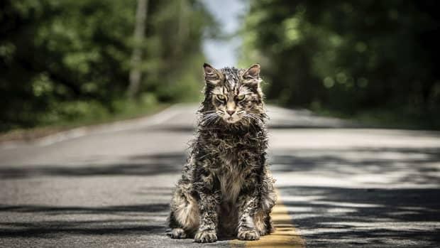 pet-sematary-2019-movie-review
