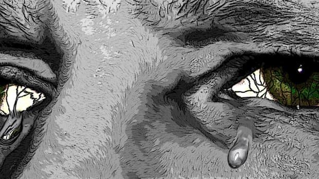 sacred-tears