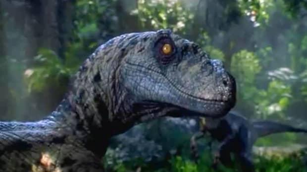 velociraptor-quick-facts