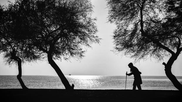 the-walking-widow