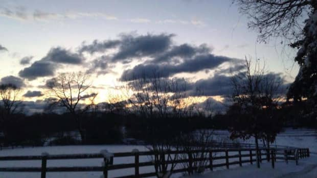 50-reasons-to-not-quit-horseback-riding-lessons-in-the-winter