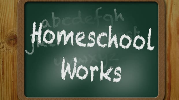 benefits-of-homeschooling-my-children-examined