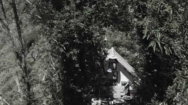 the-woods-where-the-witch-lived