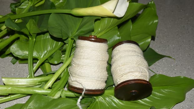 hand-dyeing-wool-with-arum-lily-leaves