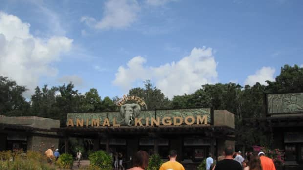 4-reasons-you-should-spend-a-full-day-at-disneys-animal-kingdom