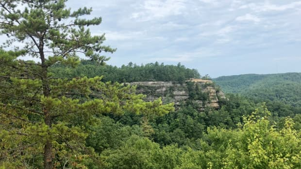 traveling-to-red-river-gorge-geological-area-in-the-daniel-boone-national-forest-in-kentucky