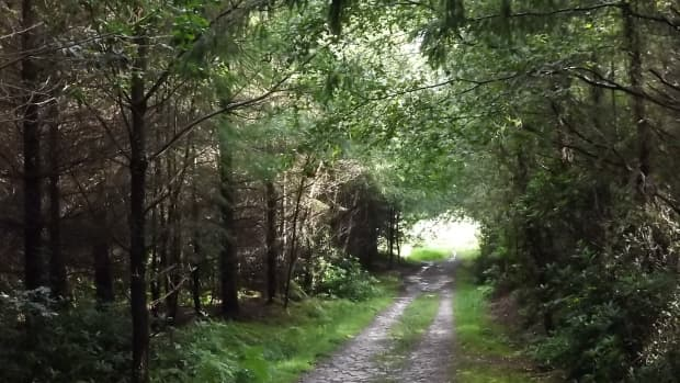 the-roman-road-a-poem-by-thomas-hardy