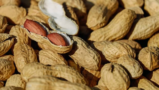 food-allergy-facts