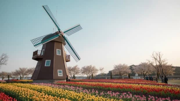 the-pros-and-cons-of-living-in-the-netherlands