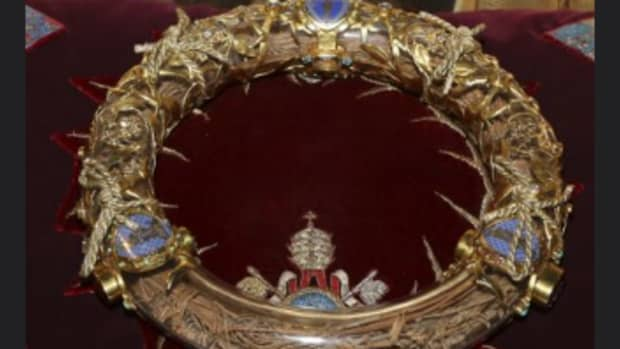 christs-crown-of-thorns
