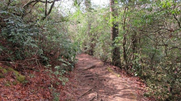 pink-beds-loop-trail