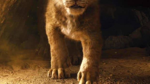 the-lion-king-answering-the-live-action-vs-animated-feature-conundrum-once-and-for-all