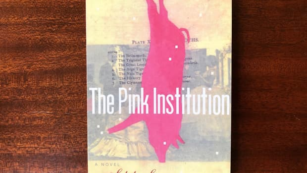 hybrid-or-cross-genre-experimental-books-by-women