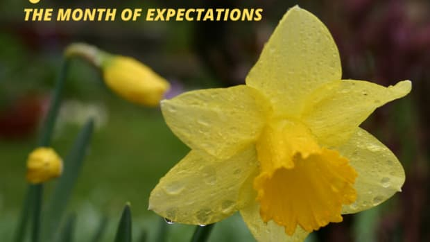 31-quotes-about-march-the-month-of-expectation