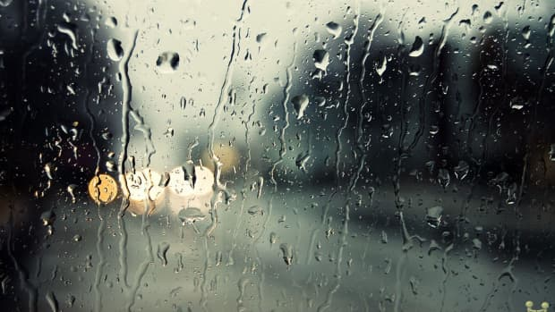 it-rained-today