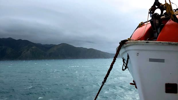 the-ferry-is-the-best-to-travel-to-picton-from-wellington