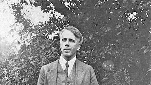 analysis-of-poem-mowing-by-robert-frost