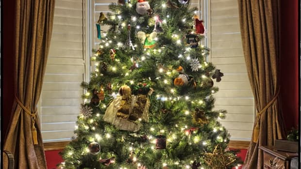 10-things-to-do-with-your-christmas-tree-after-christmas