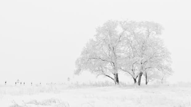 el-invierno-mas-largo