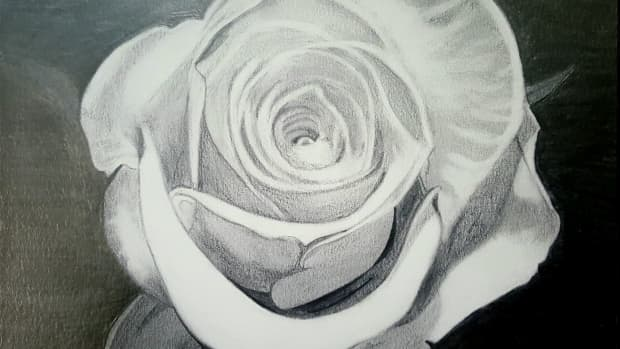 peddles-of-a-dying-rose