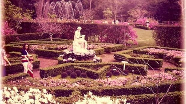 bayou-bend-gardens-in-houston-former-home-of-miss-ima-hogg