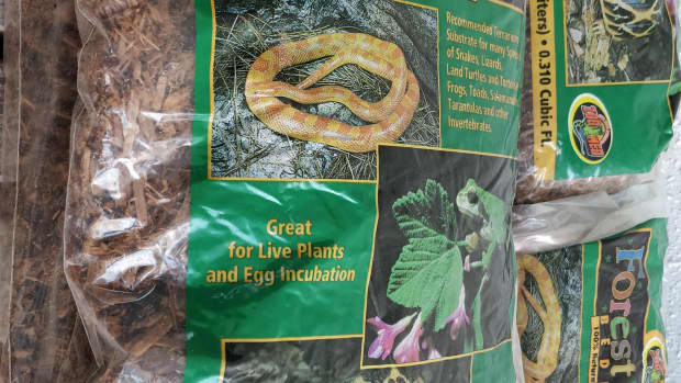 substrates-and-safe-to-use-plants-for-tortoise-enclosures
