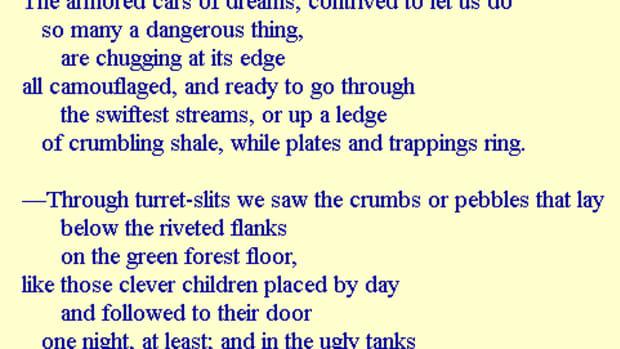 analysis-of-poem-sleeping-standing-up-by-elizabeth-bishop