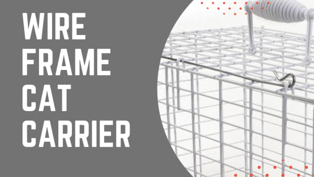 pros-and-cons-of-a-wire-frame-cat-carrier