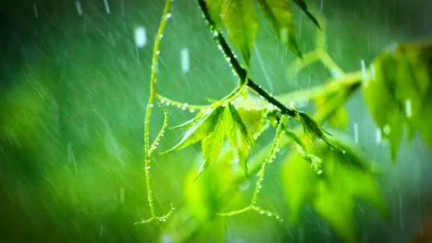 on-a-rainy-evening