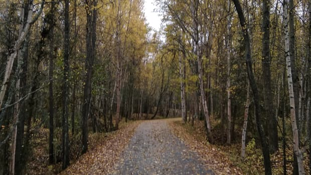 walking-as-a-way-of-life