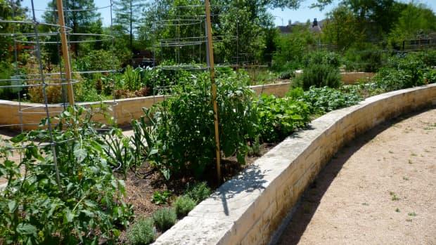mandell-park-in-houston-neighborhood-urban-harvest-oasis