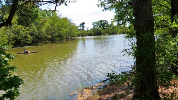 kickerillo-mischer-preserve-nature-lovers-paradise-in-houston