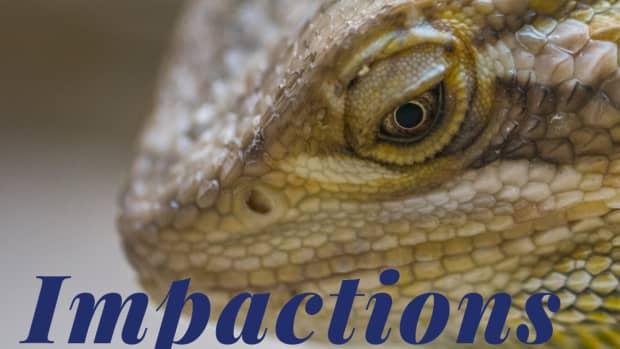 impaction