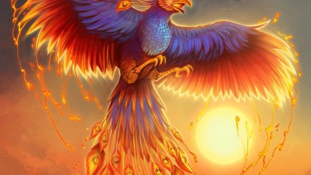a-poem-called-flight-of-the-phoenix